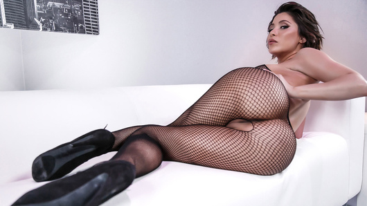 Aleksa Nicole's bouncy booty is a sight to be seen, but what's even better is that hot ass stuffed into a tight fishnet bodysuit. Watch this anal queen take a thick cock in her big wet butt!