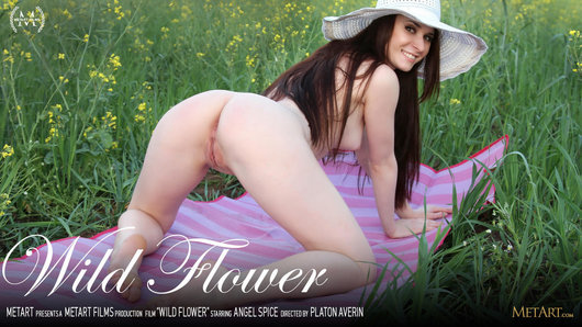 Film Wild Flower starring Angel Spice directed by Platon Averin